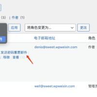 WordPress  的发送重置密码链接功能及优化