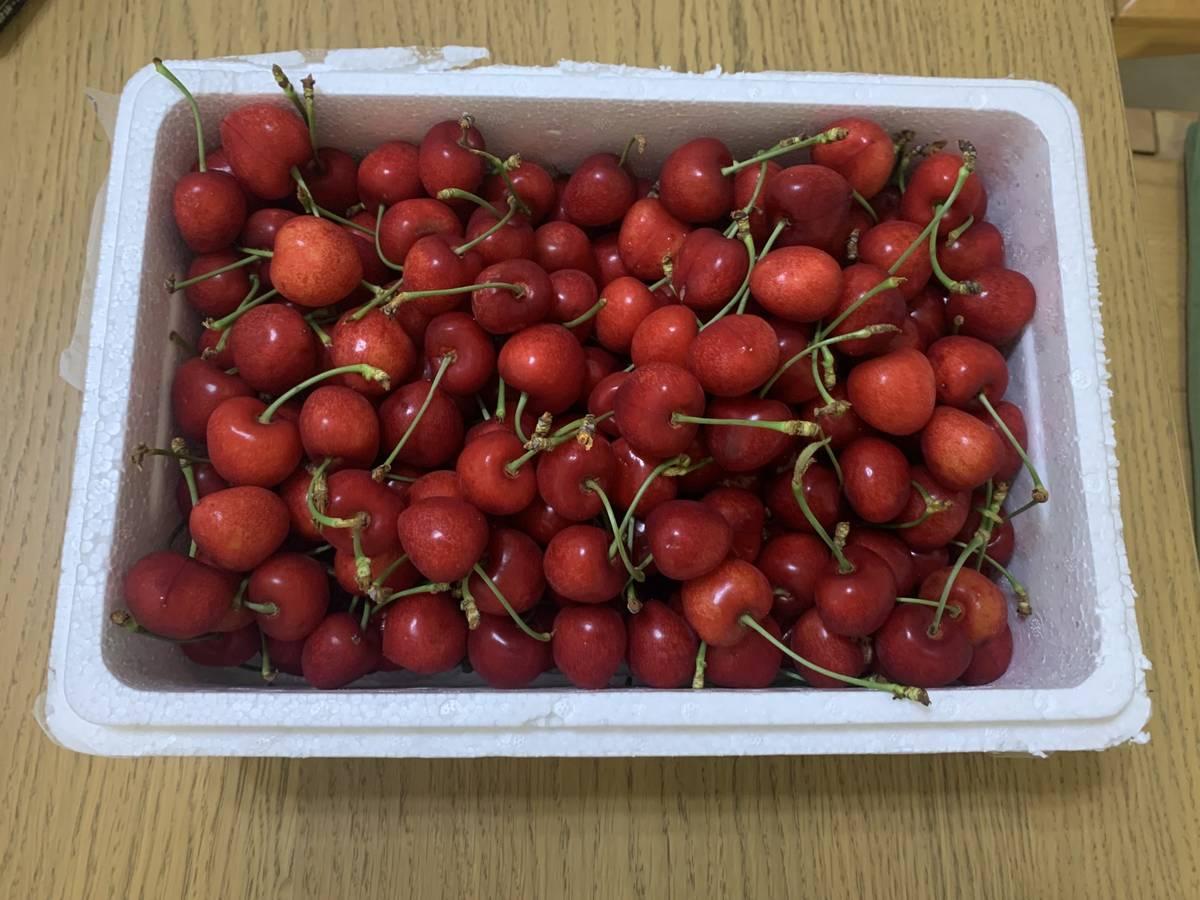 六月来了,朋友寄送了一箱大连的大樱桃!😋